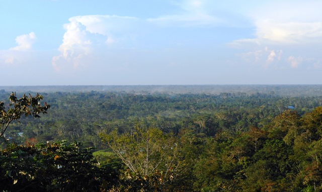 Looking east over the Amazon jungle