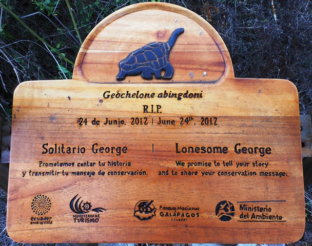 TRIBUTE TO LONESOME GEORGE