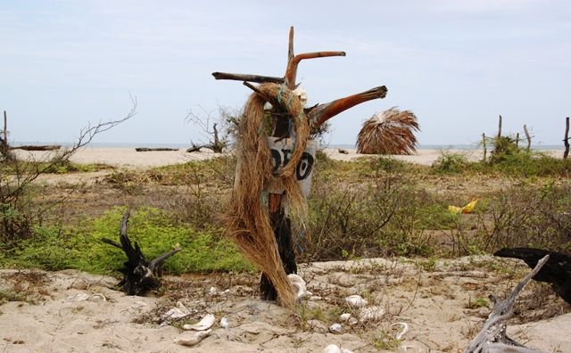 "Beach Art Exhibit no 2: ""Driftwood with hair"""
