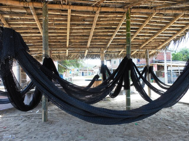THEY LOVE HAMMOCKS IN ECUADOR. THIS IS THE SEAFRONT AT SALANGO, WHERE THE LOCALS COME FOR AN ORGY OF HAMMOCK LYING.