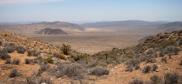 VIEW OVER PLEASANT VALLEY. JOSHUA TREE NATIONAL PARK.
