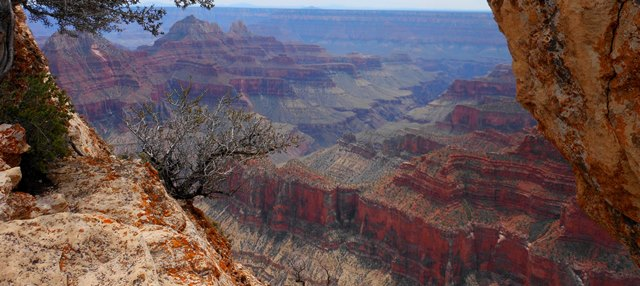 IMAGES OF THE CANYONLANDS